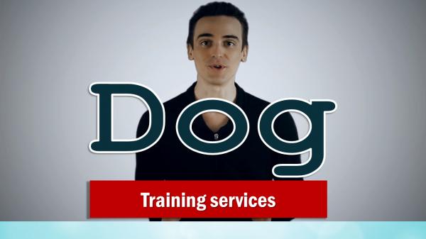 DOG training services - Spokesperson