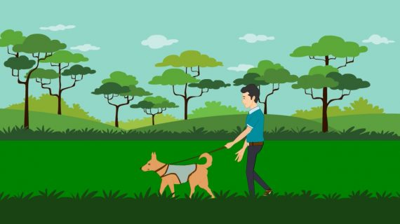 Dog Walking & Sitting Explainer Video