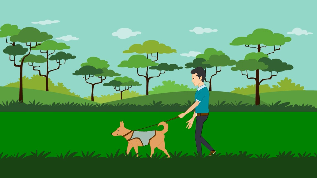 Dog Walking & Sitting Explainer Video